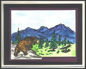 This card was created using two stamps, Bear on Ledge, Lg. and Mountain Scene.